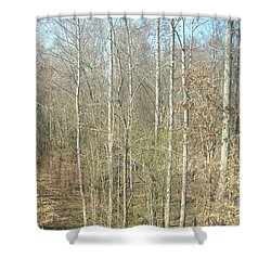 The Woods Shower Curtain by Joseph Baril