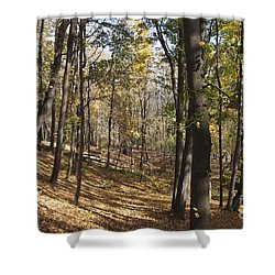 Shower Curtain featuring the photograph The Woods by William Norton