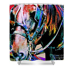 Shower Curtain featuring the photograph The Working Horse by Annie Zeno