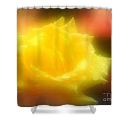Shower Curtain featuring the photograph New Orleans  Yellow Rose Of Tralee by Michael Hoard