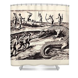 Their Manner Of Killynge Crocodrilles Shower Curtain by Peter Gumaer Ogden