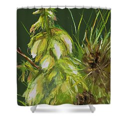 Theres A Yucca In My Yard Shower Curtain by Frances Marino