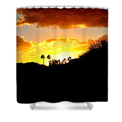 There's Gold In Them Thar Hills Shower Curtain by Jay Milo