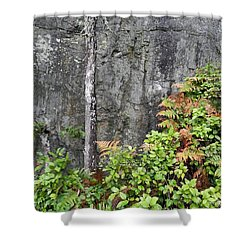 Shower Curtain featuring the photograph Thetis In Fall by Cheryl Hoyle