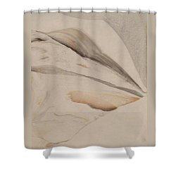 Shower Curtain featuring the painting Thinker by Mike Breau