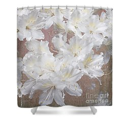 Shower Curtain featuring the photograph Thinking Of Home by Arlene Carmel
