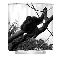 Shower Curtain featuring the photograph Thinking Of You Black And White by Joseph Baril