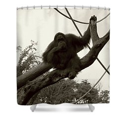 Shower Curtain featuring the photograph Thinking Of You Sepia by Joseph Baril