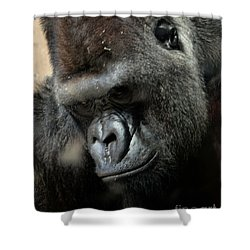 Thinking Shower Curtain by Steven Reed