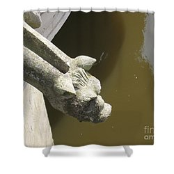 Thirsty Gargoyle Shower Curtain by HEVi FineArt