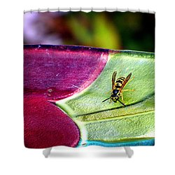 Thirsty Shower Curtain by Greg Simmons