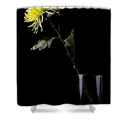 Shower Curtain featuring the photograph Thirsty by Sennie Pierson