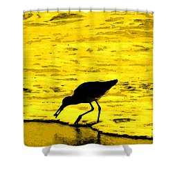 Shower Curtain featuring the photograph This Beach Belongs To Me by Ian  MacDonald