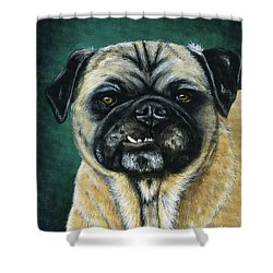This Is My Happy Face - Pug Dog Painting Shower Curtain