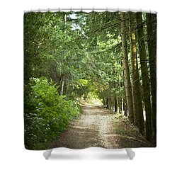 This Is The Way Walk In It Shower Curtain by Georgia Fowler