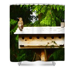 This Place Is Too Crowded Shower Curtain by Kym Backland
