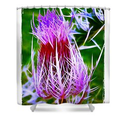 Shower Curtain featuring the photograph Thistle by Judi Bagwell
