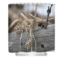 Shower Curtain featuring the photograph Thistles And Barbed Wire by Ann E Robson