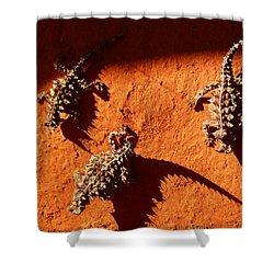 Thorny Devils Shower Curtain
