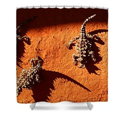 Thorny Devils Shower Curtain