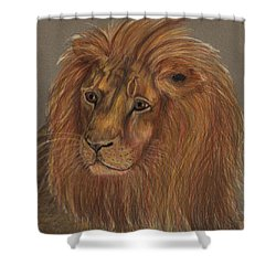 Shower Curtain featuring the drawing Thoughtful Lion 2 by Stephanie Grant