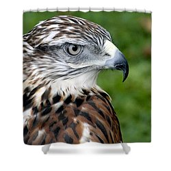 The Threat Of A Predator Hawk Shower Curtain