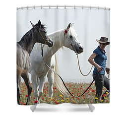 Three At The Poppies' Field... 1 Shower Curtain by Dubi Roman