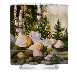 Three Birch By Rocky Stream Shower Curtain
