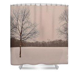Three Birch Trees In Winter Shower Curtain