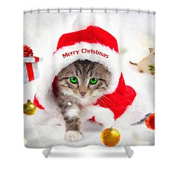 Shower Curtain featuring the photograph Three Christmas Kittens by Chris Armytage