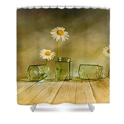 Three Daisies Shower Curtain by Veikko Suikkanen