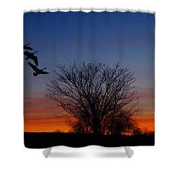 Three Geese At Sunset Shower Curtain by Raymond Salani III