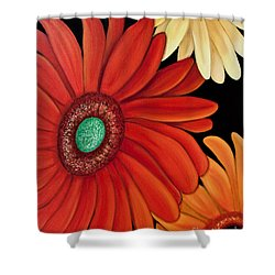 Shower Curtain featuring the painting Three Gerbera by Barbara McMahon