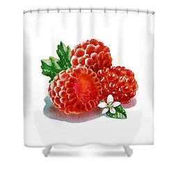 Shower Curtain featuring the painting Three Happy Raspberries by Irina Sztukowski