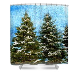 Shower Curtain featuring the photograph Three In A Row by Judy Palkimas