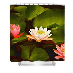 Three Lovely Gracious Waterlilies Shower Curtain by Byron Varvarigos