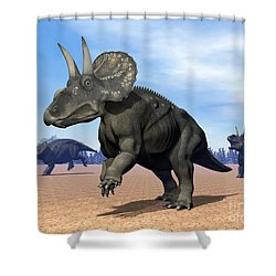 Three Nedoceratops In The Desert Shower Curtain by Elena Duvernay