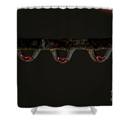 Three Of Hearts Shower Curtain by Patrick Shupert