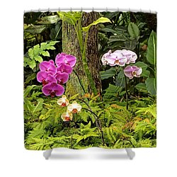 Three Orchid And A Tree Shower Curtain