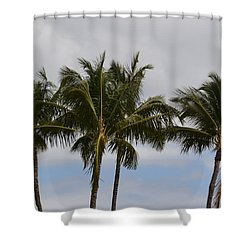 Three Palm Trees Shower Curtain
