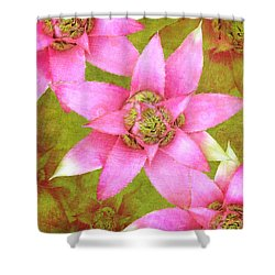 Three Pink Ladies Shower Curtain