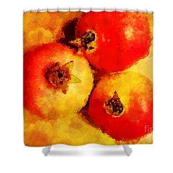 Three Pomegranates Shower Curtain by Mary Machare