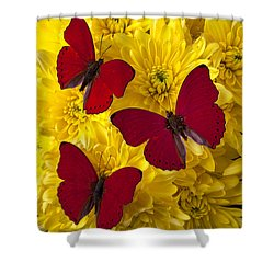Three Red Butterflys Shower Curtain by Garry Gay