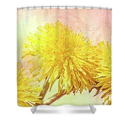 Three Simple Things Shower Curtain by Bob Orsillo