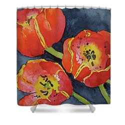 Three Sisters Shower Curtain by Beverley Harper Tinsley