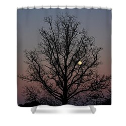 Through The Boughs Landscape Shower Curtain by Dan Stone