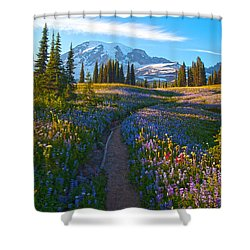 Through The Golden Meadows Shower Curtain by Mike Reid