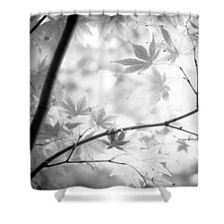Through The Leaves Shower Curtain