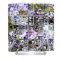 Through The Looking Glass Shower Curtain by Richard Thomas