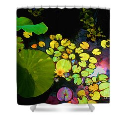 Through The Looking Glass Bristol Rhode Island Shower Curtain by Tom Prendergast